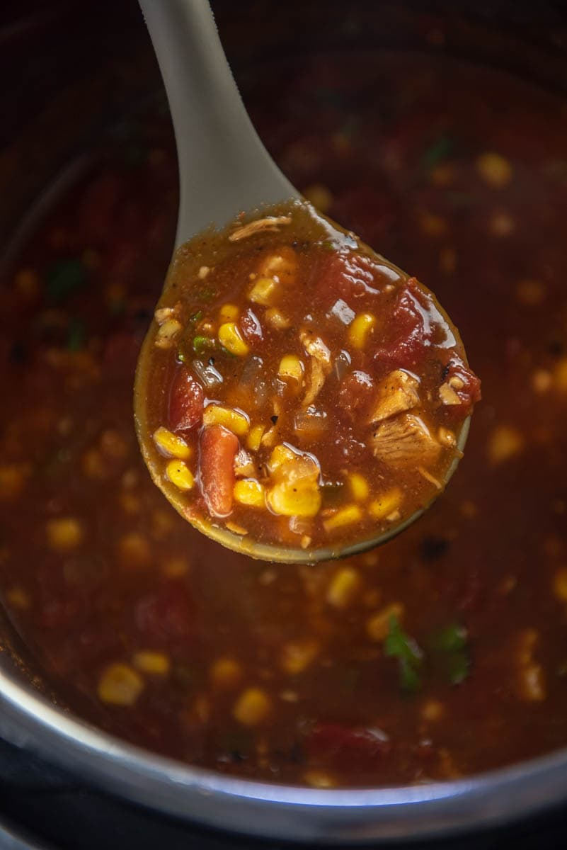 ladle full of turkey tortilla soup
