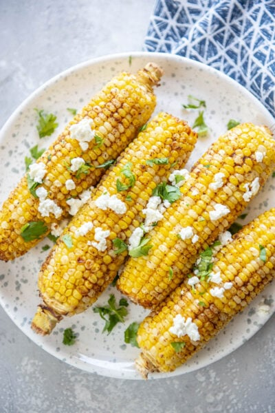 corn on the cob on a white plate
